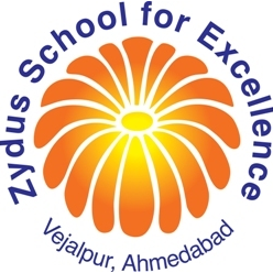 Top Institutes - Zydus School for Excellence
